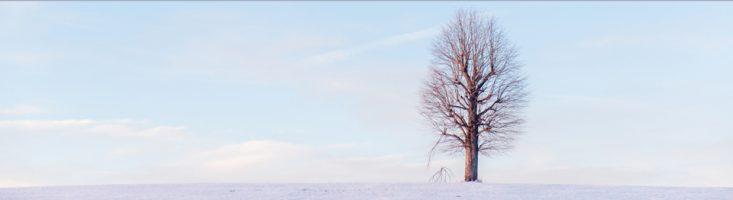 Umgebung Brunne im Winter