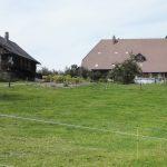 Stöckli und Bauernhaus